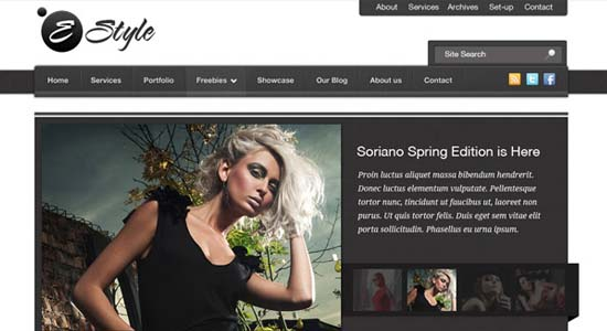 E Style Free PSD EZine Style Blog Collection of Free PSD templates