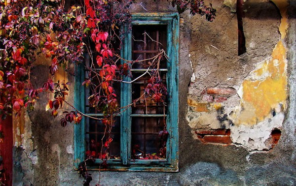 Autumn Composition 40 Cool Examples of Still Life Photography