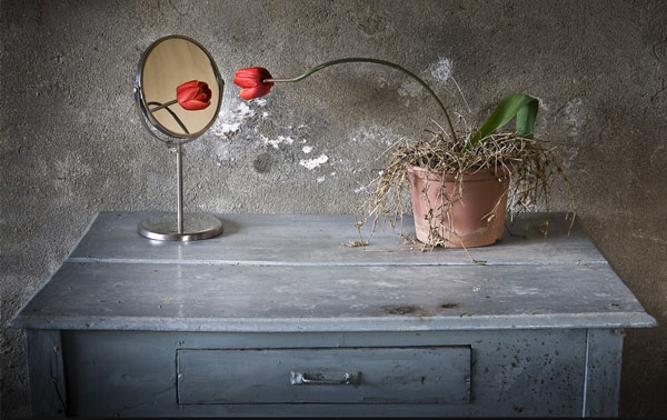 Narciso 40 Cool Examples of Still Life Photography