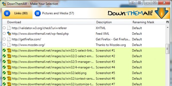 downthemall 10 Must Have Firefox Plugins