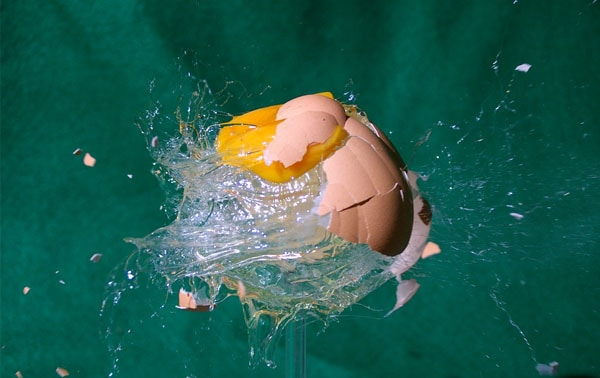 egg 50 Cool Examples of High speed Photography