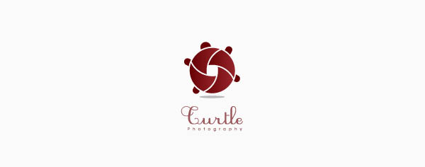 turtle 80+ Cool Photography Logos