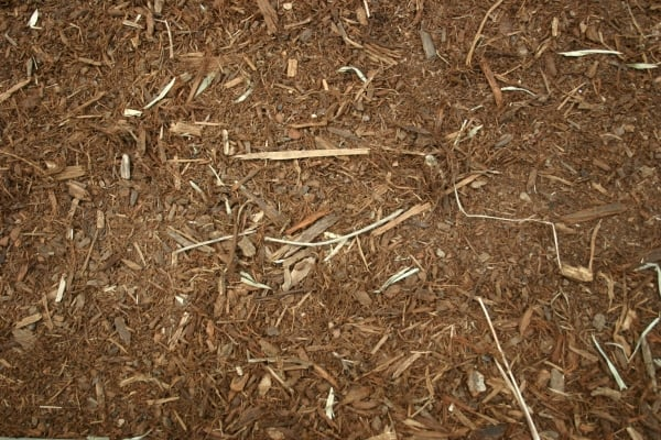 ground wood texture 20+ Cool Free Background Textures
