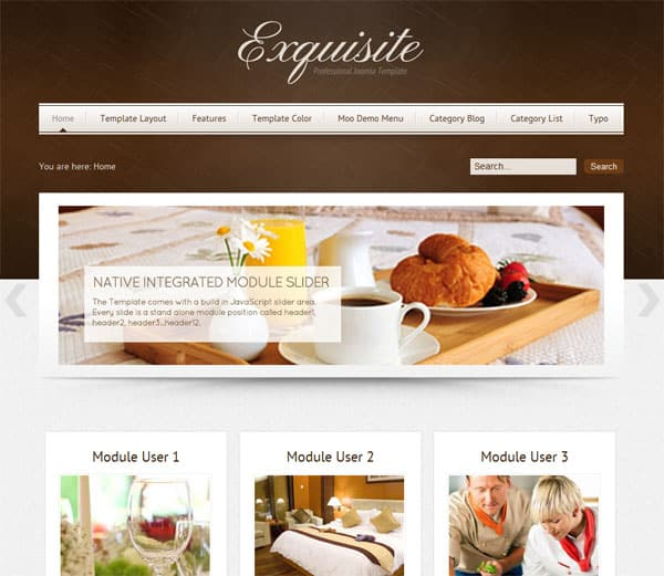 Exquisite 25 Best Joomla Templates for Inspiration
