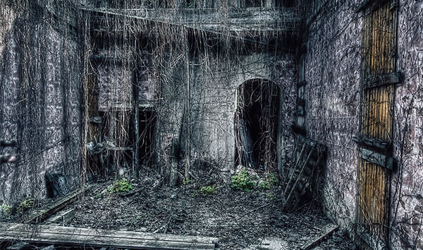 Urban decay 6