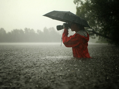 drops 30+ Superb Rain Photography Collections
