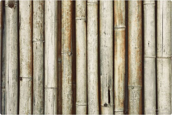Bamboo 4 50+ Free Bamboo Textures For Photoshop