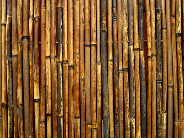 Bamboo Gate 50+ Free Bamboo Textures For Photoshop