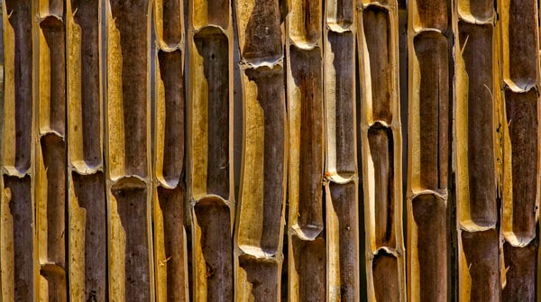 Bamboo abstract 50+ Free Bamboo Textures For Photoshop