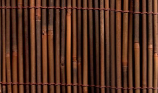 Dark-Bamboo