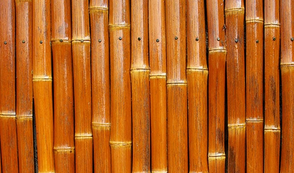 Japanese Bamboo 50+ Free Bamboo Textures For Photoshop