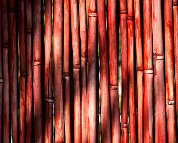 Red Bamboo Textures 50+ Free Bamboo Textures For Photoshop
