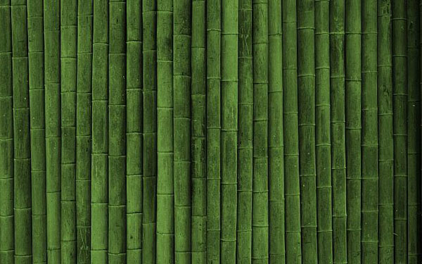 green Bamboo textures 50+ Free Bamboo Textures For Photoshop