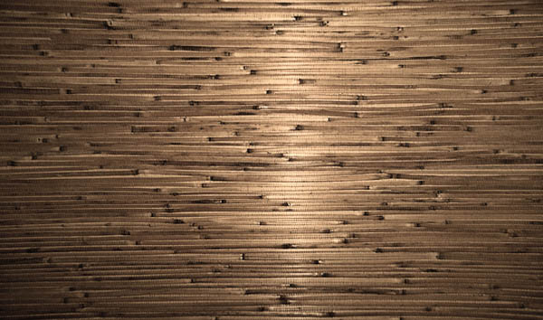 pretty bamboo 50+ Free Bamboo Textures For Photoshop