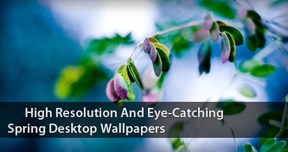 preview-high-resolution-eye-catching-spring-wallpapers