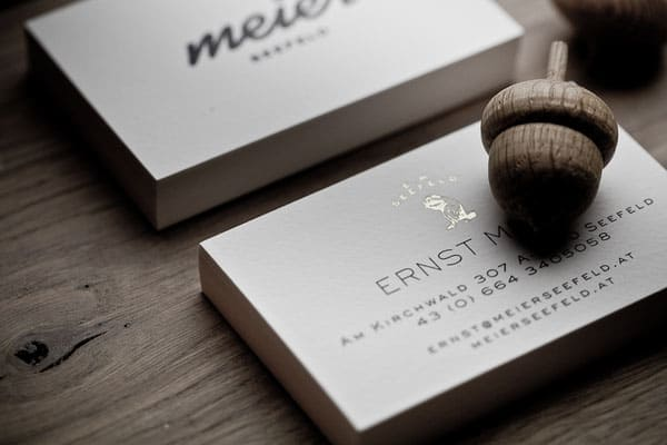 Meier Seefeld 40+ Impressive Foil Stamped Business Cards