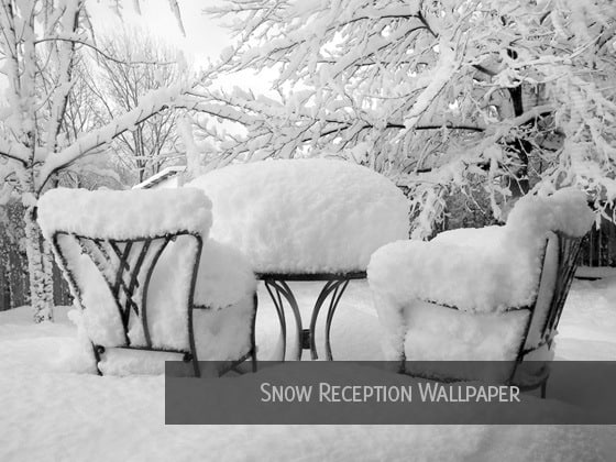 snow reception wallpaper 20 Snow Background Collections