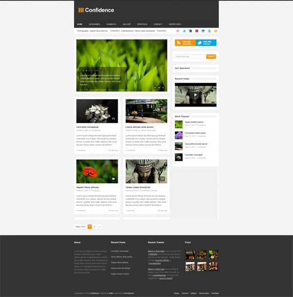 Confidence 50 Free and Premium Responsive WordPress Themes