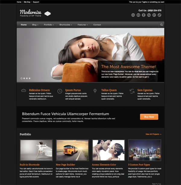 Modernize 50 Free and Premium Responsive WordPress Themes