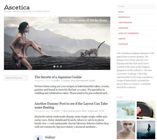 ascetica 50 Free and Premium Responsive WordPress Themes
