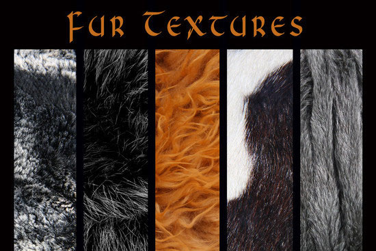 furtextures30 30+ Fur Texture Collections