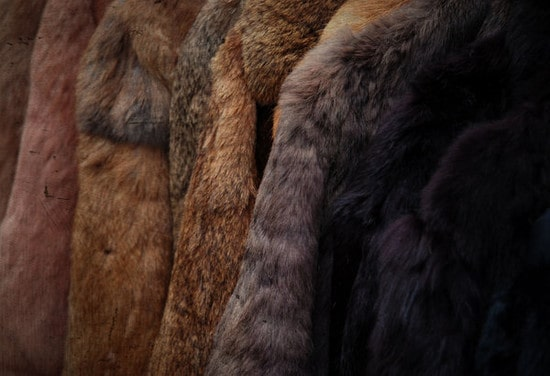furtextures33 30+ Fur Texture Collections