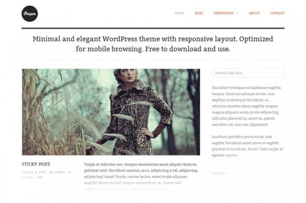 origin 50 Free and Premium Responsive WordPress Themes