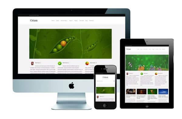 orion 50 Free and Premium Responsive WordPress Themes
