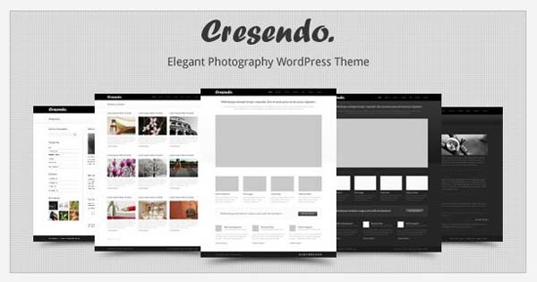 wordpress photography themes15 20+ Stunning Premium WordPress Photography Themes