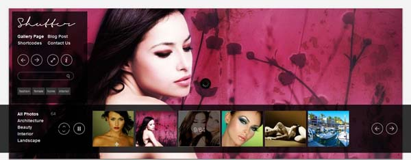 wordpress photography themes2 20+ Stunning Premium WordPress Photography Themes