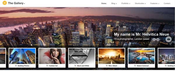 wordpress photography themes3 20+ Stunning Premium WordPress Photography Themes
