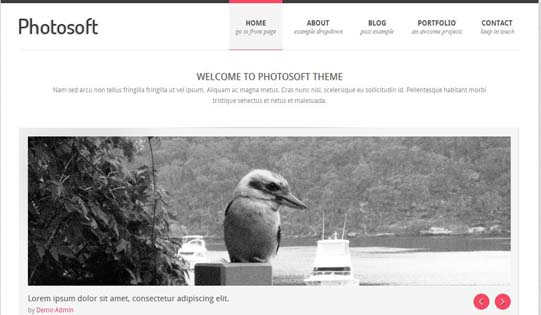 wordpress photography themes6 20+ Stunning Premium WordPress Photography Themes