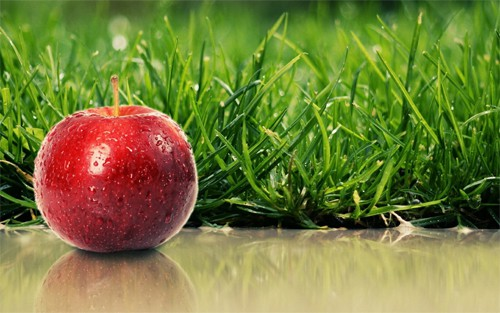 3 Applewallpapers 30+ Examples of Fruit Wallpaper Collections