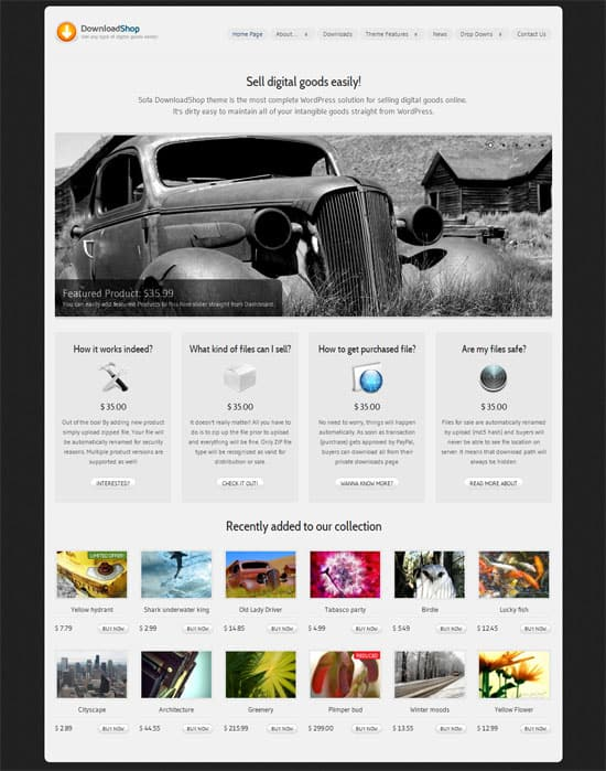 Download Shop 50 Amazing WordPress Grid Themes