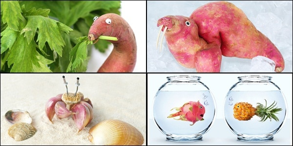Funny Food Photo Manipulation