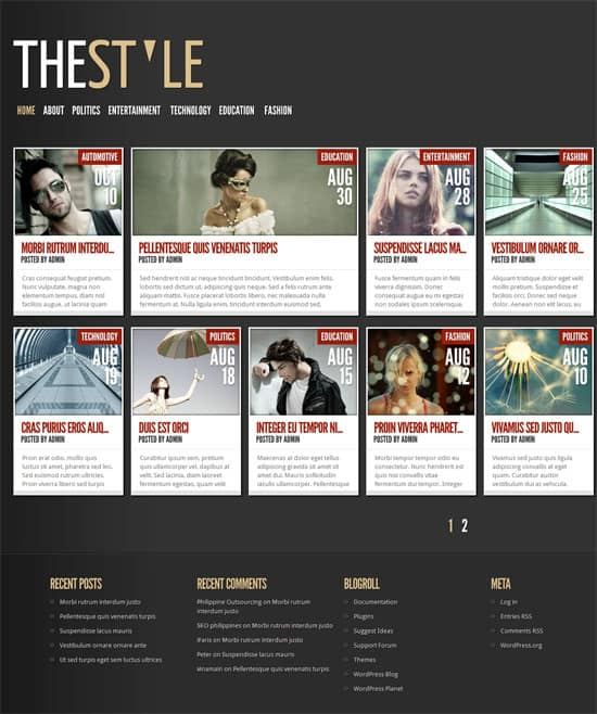 TheStyle Theme 50 Amazing WordPress Grid Themes