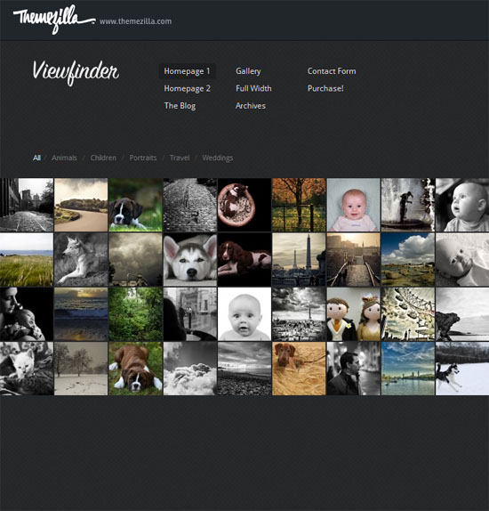Viewfinder 50 Amazing WordPress Grid Themes