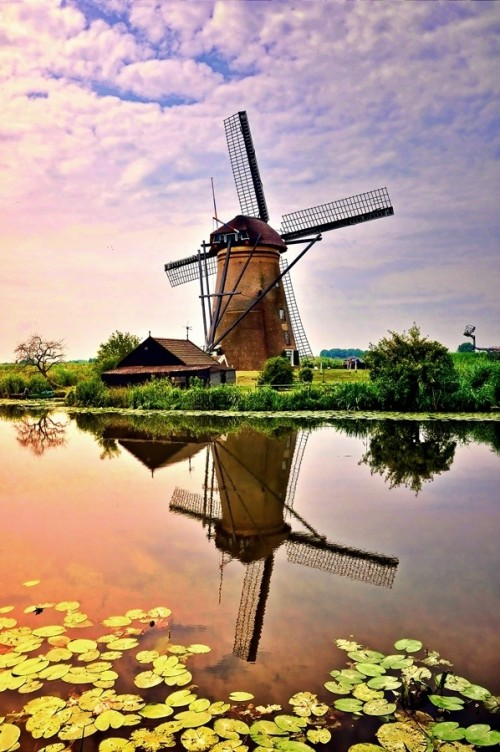 Windmill Kinderdijk 500x752 50 Inspiring Windmill Pictures