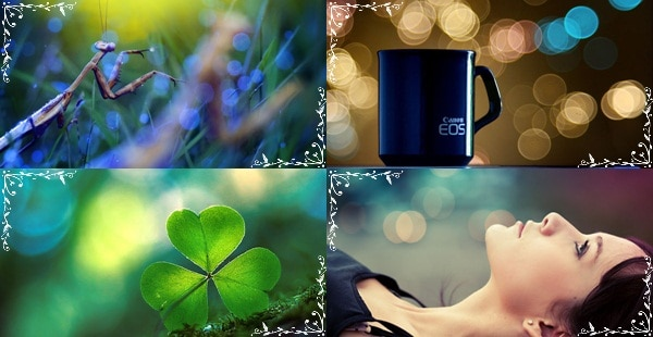 bokeh photography 40+ Amazing Bokeh Photography Examples