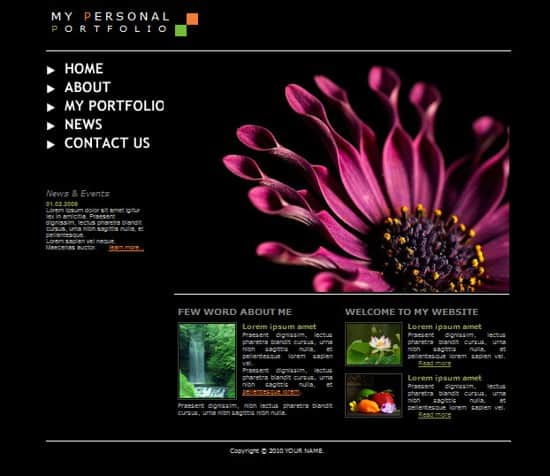 wpid 01 my personal portfolio 20 Free Flash Website Templates For Download