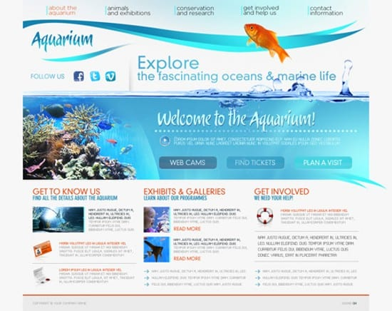 wpid 03 Aquarium 20 Free Flash Website Templates For Download
