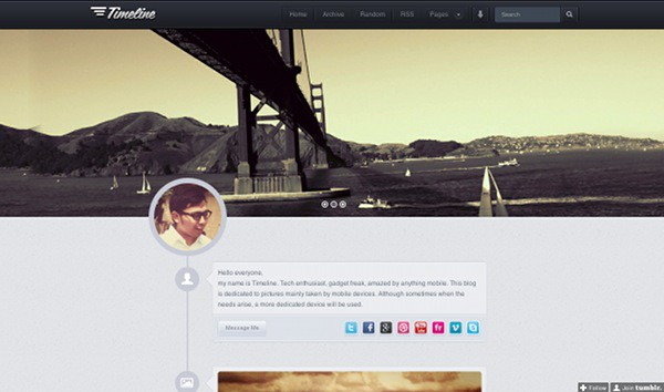 wpid 12 premium tumblr themes 45 Amazing Premium Tumblr Themes