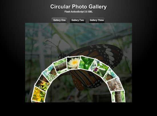 wpid 16 circulat photo gallery 20 Free Flash Website Templates For Download