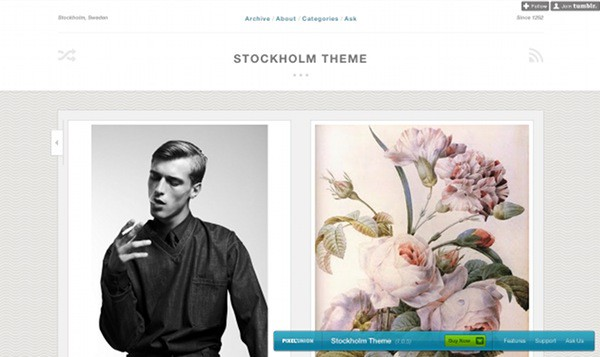 wpid 33 premium tumblr themes 45 Amazing Premium Tumblr Themes
