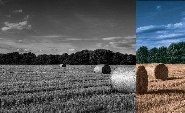 Colorize a Black and White Photo using Photoshop Cs6