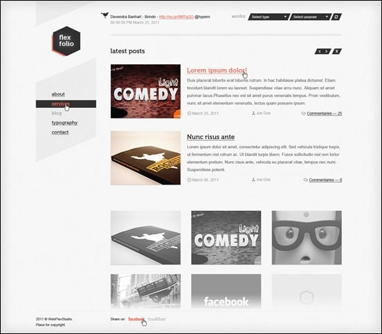 wpid flexfoliothumb 50 Amazing WordPress Grid Themes