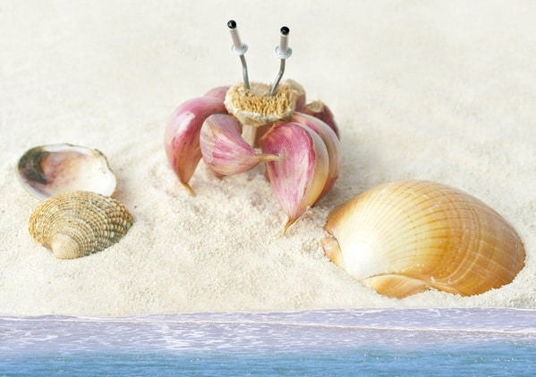 wpid garlic Funny Food Photo Manipulation by Vanessa Dualib