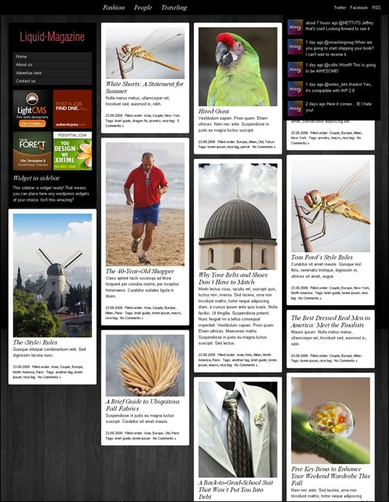 wpid liquid magazine3thumb 50 Amazing WordPress Grid Themes