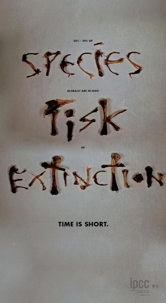wpid species risk extinction 563x1024 50 Examples of Typography in Advertising