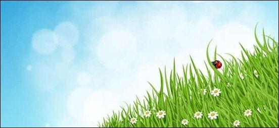 green-grass-nature-background